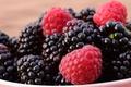 Картинка ежевика, лето, еда, урожай, природа, чашка, фон, много, макро, миска, пиала, блеск, сочная, крупный план, ...