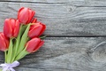 Картинка цветы, букет, red, fresh, wood, pink, flowers, beautiful, romantic, tulips, красные тюльпаны