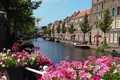 Картинка Flowers, Street, Нидерланды, Bridge, Цветочки, река, South Holland, набережная, Здания, Дома, лодки, Netherlands, Улица, Мостик, ...