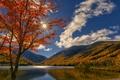 Картинка облака, осень, Нью-Гэмпшир, озеро, New Hampshire, дерево, White Mountains, Уайт-Маунтинс, Echo Lake, озеро Эхо, Белые ...
