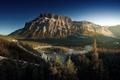 Картинка лес, река, Канада, леса, свет, гора