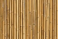 Картинка Bamboo, trunk, plant
