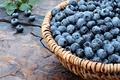 Картинка fresh, wood, berries, ягоды, черника, корзинка, голубика, blueberry