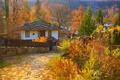 Картинка Fall, Colors, Дорожка, Дома, Autumn, Path, Осень, Village, Деревня