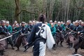 Картинка Mugen no jûnin, battlefield, Blade of the Immortal, hitokiri, anime, kanji, movie, army, oriental, sword, ...