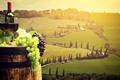 Картинка пейзаж, виноград, бокалы, пробки, Тоскана, боке, вино, бочка, Италия, зеленый, бутылка, поля, красный