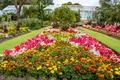 Картинка сады, бархатцы, United Kingdom, флоксы, Великобритания, Swansea Botanic Gardens, цветы