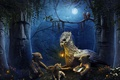 Картинка медведи, фонарь, story about guardians of nature, ночь, луна, грифон, деревья, филин, истуканы, цветы