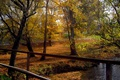 Картинка Осень, Деревья, Fall, Листва, Речка, Autumn, Colors, River, Trees, Leaves