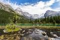 Картинка домики, горы, деревья, Lake O'Hara, озеро, лес, облака, небо, скалы, Канада, камни, Yoho National Park