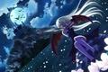 Картинка вампирша, полнолуние, ночь, летучие мыши, красные глаза, кровь, замок, клинок, голод, Jouko Sakashita, черные крылья, ...