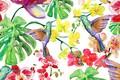 Картинка Листья, Текстура, Птицы, Цветы, Калибри, Фон