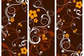 Картинка Vector, collection, Floral, banners
