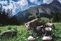 Картинка alpine chucks, горы, кеды, камень